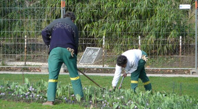 Conserje jardinero porteros express madrid for Trabajo jardinero